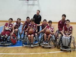 Bradipi wheelchair basket